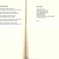 Something Else Within Poems